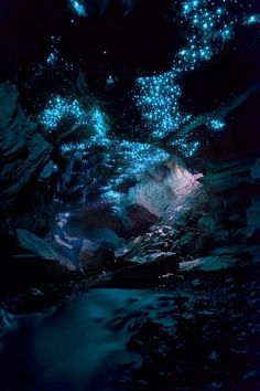 Your New Zealand Photos is part of Glow worm cave - Enjoy photos from New Zealand submitted to National Geographic by readers like you Cool Places To Visit, Places To Travel, Places To Go, National Geographic, Glow Worm Cave, Kino Box, Landscape Photography, Nature Photography, Night Photography