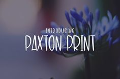 Meet Paxton Print! An all uppercase quirky font great for tees, logo design, journaling and more! Includes OTF and TTF font files Limited Commercial Use OK!