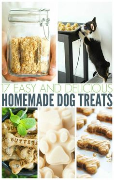 Healthy Dog Treats - Homemade dog treats are better for your dog than the store bought varieties. Check out this list of awesome homemade dog treats. Puppy Treats, Diy Dog Treats, Healthy Dog Treats, Healthy Snacks, Healthy Tips, Dog Biscuit Recipes, Dog Treat Recipes, Dog Food Recipes, Baked Dog Treat Recipe