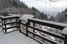 Neve sull'Oasi. Oasi Zegna, Trivero (BI). #Oasizegna #oasi #zegna #trivero #biella #winter #snow #white #landscape