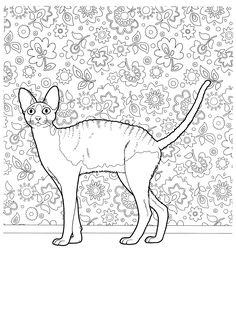 Cat Coloring Page Digital Stamp Wildflower by ArtWildflowersDigi