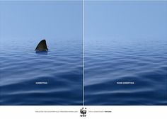 """""""Exploiting the ecosystem also threatens human lives for a living planet."""" - Horrifying with a shark. More Horrifying without any shark. - WWF"""