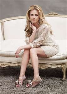 Dina Manzo-A Jersey girl who has turned interior design and event planning into a lucrative business and an art form.