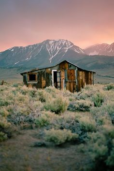 Long-forgotten shack near Mount Morrison, Colorado × Abandoned Buildings, Old Buildings, Abandoned Places, Cabana, Beautiful World, Beautiful Places, Bodie California, Old Barns, Shed Plans