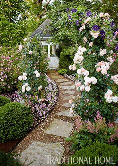 Garden path - climbing rose and clematis combo