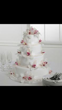 White hawaiian cake.