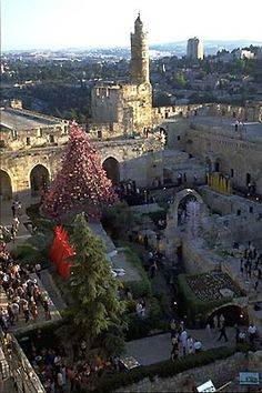 Dale Chihuly - Artist - OVERVIEW JERUSALEM