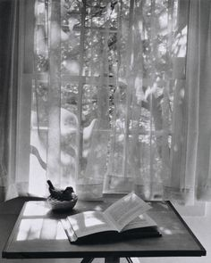 André Kertész, Newtown, Connecticut, October 17, 1959. From On Reading.