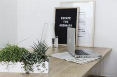 réaliser un terrarium dans un emballage carton- urban jungle blog