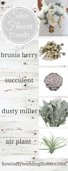 Silver Grey Wedding Ideas flowers. Silver Wedding Palette Decor and Cake. Grey Wedding Ideas and inspiration. #silverwedding #greywedding #greyflowers #silverflowers #succulents
