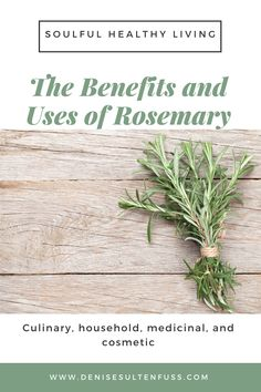 Rosemary offers culinary, medicinal, household, and cosmetic uses. Herbs can be grown anywhere, so whether you live in a high rise condo or a country cottage, growing rosemary is possible. #herbs #gardener #rosemary #healthyliving #soulfulhealthyliving #herbgarden Perrenial Herbs, Grain Alcohol, Aromatic Herbs, Big Meals, Healthy Food Choices, Shade Plants, Edible Garden, Plant Care, Body Products