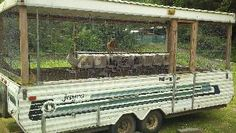 Turn an old travel trailer into a chicken coop!