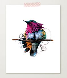 Wine-throated hummingbird, illustration by Katie Rodgers. www.paperfashion.net