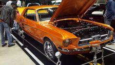 1967 Ford #Mustang Jax Wax Customer David Jefferson He won fan favorite! Virginia Hot Rod and Custom Car Show Hamptom VA 2014 #VirginiaCarShow jaxwax.com