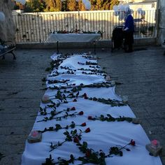 הצעת נישואין בכותל בשקיע, עיצוב זל 130 ורדים