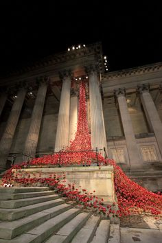 Liverpool Remembrance Poppies at St George's Hall - see them lit up at night until January
