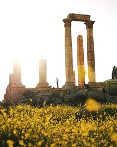 Temple of Hercules  @visitjordan #shareyourjordan by hirozzzz