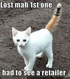 Funny Animal Pictures Of The Day - 27 Pics | Aha! That does explain the lack of uniformity.....but I think there might have been a mix-up. You seem to have a raccoon tail there. More