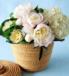 """-- Large blossoms give you lots of impact and are easy to arrange. Just """"stripe"""" the blossoms.  -- Anchor one side of the arrangement with flowered cabbage, place a large white hydrangea on the opposite side.  -- Line the middle with ruffly pink peonies, including a few buds for interest."""