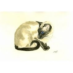 Siamese Cat by Dianne Heap @ Mini Gallery - Watercolour Painting - M797/84p