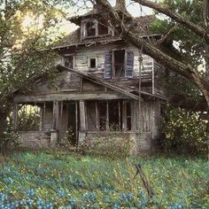 Abandoned Ohio, Old Abandoned Buildings, Abandoned Hospital, Abandoned Mansions, Old Buildings, Abandoned Places, Abandoned Library, Abandoned Property, Abandoned Vehicles