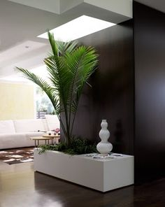 Rachel Zoe´s home The Rachel Zoe Project, Jungle Theme Parties, Hollywood Hills Homes, Black And White Living Room, Sweet Home, House Entrance, Celebrity Houses, Home Decor Inspiration, Decor Ideas