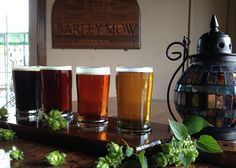 How This Local Brewery Plans to Take Over Florida: The Barley Mow Brewing Company