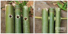 1bamboo-trellis-step-1-2