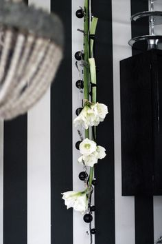 KUKKALA #ritarinkukka #amaryllis #joulukukat #christmasflowers