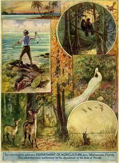 1929 Nature Magazine - Florida