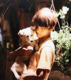 [hiatus] 방탄소년단 : Photo