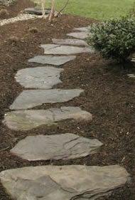Rock Pathway with bark surrounding it