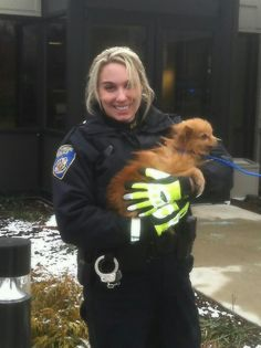 """""""She is not getting killed on MY watch!"""", said Baltimore City Police Officer Steinhorn when she spotted this tiny wet, frightened dog running against traffic on Interstate 83. She pulled over, shut 83 down, and called in three units for rescue assistance. After a chase,  Officer Steinhorn tucked the wet, dirty, matted, little dog safely under her arms and took her to the Maryland SPCA. This little sweetie has since made an appearance on the local news and has multiple adoption applications."""
