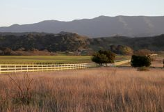 Our senior home buyer hops a few fences in her home state to bring us back these shots of the Santa Ynez Valley at sunset, on The Terrain BULLETIN.
