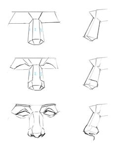Tips For drawing tips Head Anatomy, Human Anatomy Drawing, Anatomy Art, Anatomy Organs, Drawing Heads, Nose Drawing, Pencil Art Drawings, Art Drawings Sketches, Eye Drawings