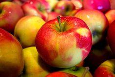Der Apfel ist das beliebteste Obst