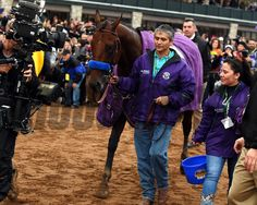 American Pharoah with jockey Victor Espinoza wins the Breeders' Cup Classic at Keeneland on Oct. 31, 2015. Dave Harmon Photo