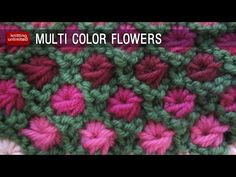 Multi color Aster Flowers