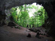 Parque nacional Cueva de la Quebrada del Toro - FacilGuia.com | Venezuela | Turismo Venezuela ,Guía oficial de turismo, Facilguia , #FacilGuia, Inventario Turístico, una Ventana para el mundo