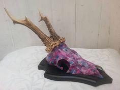 Beautiful decoupage mounted roe deer skull with by StarFoxSkulls