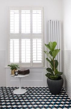 Tier on Tier Shutters Wooden Window Shutters, Wooden Windows, Custom Windows, Tall Windows, Neutral Paint, Window Dressings, White Trim, Natural Wood, Curtains