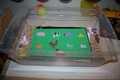 Foamies match.  Children search through dried peas to find the matching piece on their game board.