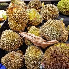 Have you tried the World's Smelliest Fruit?#Durian -- #Fruit #Durio #Asian #SoutheastAsia #KingOfFruit #Food #Foodie #Instafood #FoodPorn #Foodstagram #99RanchMarket #Hackensack #NewJersey #NJ #Groceries #GroceryStore #JerseyEats #Eeeeeats #FoodPics #FoodBlogger #FoodBlog #DesiredTastes