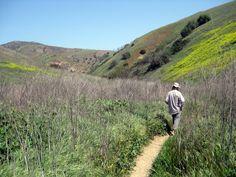 Hiking trails in California