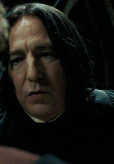 Tabby in Love — snapealanrickman: Harry Potter Hogwarts Letter, Harry Potter Severus Snape, Harry Potter Room, Harry Potter Fandom, Harry Potter World, Harry Potter Characters, Severus Snape Always, Severus Hermione, Professor Severus Snape
