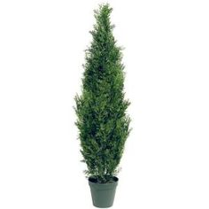 National Tree Company 48 in. Artificial Arborvitae Tree in Dark Green Round Growers Pot-LMC4-700-48-6 at The Home Depot