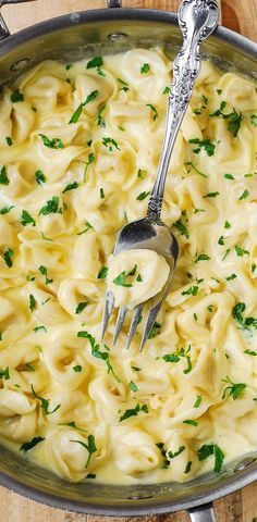 Delicious Tortellini smothered in a Creamy Asiago Cheese Garlic Sauce - easy, 30-minute pasta recipe! LOVED IT.