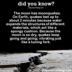The moon has moonquakes. On Earth, quakes last up to about 2 minutes because water expands the structures of different materials, which act like a spongy cushion. Because the moon is so dry, quakes keep going and going; vibrating just like a tuning...