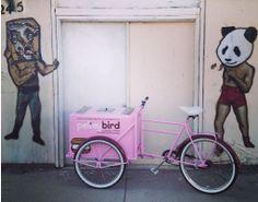 ice cream bike - peteybird - uniquely crafted ice cream sandwiches