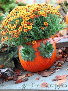 jack o plantern halloween decoration